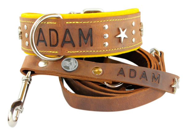 Halsband Adam im Set
